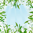 Floral background with white snowdrops, eps10 — Stock Vector