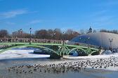 Winter, bridge and ducks — Foto de Stock
