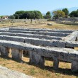Paestum - 1 of 20 — Foto de Stock