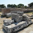 Paestum - 1 of 20 — Stockfoto