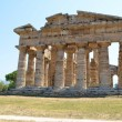 Foto de Stock  : Greek temples of Paestum