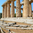 Greek temples of Paestum — Stockfoto #30303605