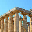 Greek temples of Paestum — Stock Photo #30303757