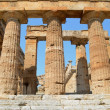 Greek temples of Paestum — Stockfoto #30304237