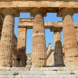 Greek temples of Paestum — ストック写真 #30304237