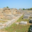 Greek temples of Paestum — Stockfoto #30305273