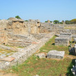 Greek temples of Paestum — Foto Stock #30305273
