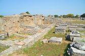 Grekiska templen i paestum — Stockfoto