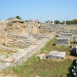 Stock Photo: Greek temples of Paestum