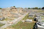 Greek temples of Paestum — Stock Photo