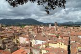 Landscape architecture in Lucca — Stock Photo