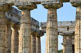 Ancient Greek columns — Stock Photo