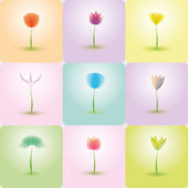 Flowers icon set, nature background — Stock Vector