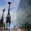 Giraffes in Leith, Edinburgh — Stock Photo #31163675
