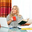 woman working on laptop zu hause — Stockfoto