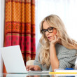 Attractive adult woman with laptop — Stock Photo #19678077