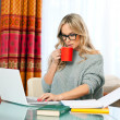 Woman working on laptop at home — Stock Photo #19676239