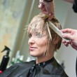 Stock Photo: Womhaving haircut