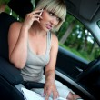 Woman with laptop in the car — Stock Photo #19723711