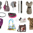 Stock Photo: Womaccessories