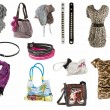 Woman accessories — Stock Photo