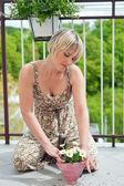 çiçek dikim kadın — Stok fotoğraf