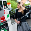Womin gas station — Stock Photo #19796511