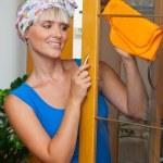 glückliche Hausfrau — Stockfoto #20437429