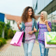 Stock Photo: Two womfriends shopping