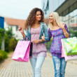 Stock Photo: Two woman friends shopping