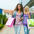 Two woman friends shopping — Stock Photo #21412259