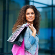 Woman shopping — Stock Photo #21412537