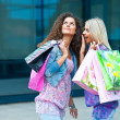 Two woman friends shopping — ストック写真