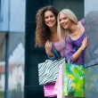 Two woman friends shopping — Stok fotoğraf