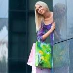 Woman shopping — Stock Photo #21415659