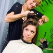 Hair stylist at work — Stock Photo #21454667