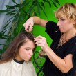 Hair stylist at work — Stockfoto #21455949