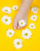 Woman feet after pedicure — Stock Photo