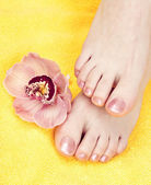 Woman feet — Stock Photo