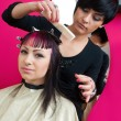 Hair stylist at work — Stock Photo #26061277