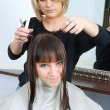 Stock Photo: Woman in hair salon