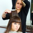 Hair stylist with hair blower — Stock Photo #26065665