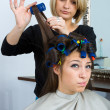 Stock Photo: Hair stylist in work