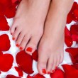 Wompedicured feet — Stock Photo #26317729