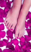 Woman pedicured feet — Stock Photo