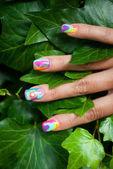 Woman nails — Stock Photo