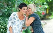 Woman firends chatting — Стоковое фото