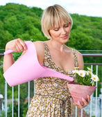 Woman watering flower plant — Stock Photo