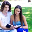 Stock Photo: Young couple with book