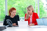 Two colleague worker in office with computer — Stockfoto